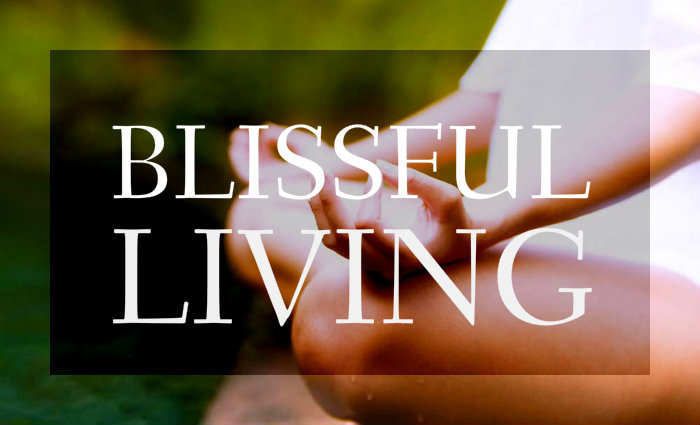 Exceptionnel Blissful Living