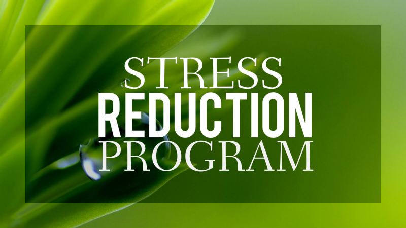 Stress Reduction Program